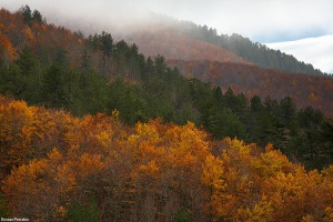 Autumn at Pindos 2010 - Kostas Petrakis landscape photography